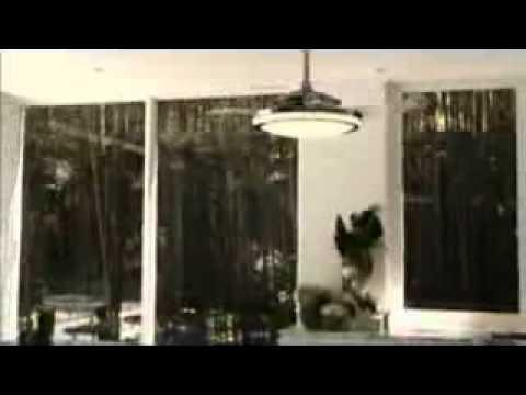 Westinghouse Fanaway 78013 Ceiling Fan