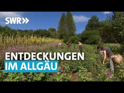 Treffpunkt Sommereise - Entdeckungen im Allgäu | SWR Treffpunkt