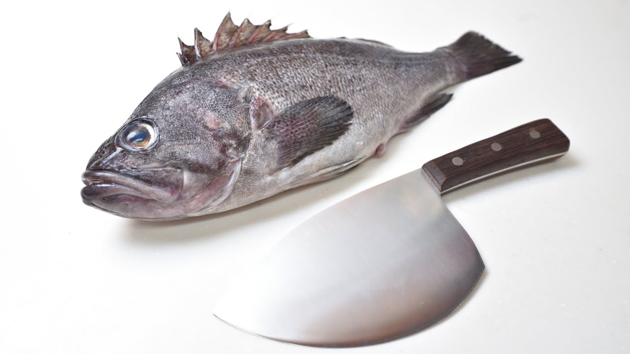 【ASMR】台湾の包丁で魚を捌く【クロソイ】Filleting fish by taiwan fish knife