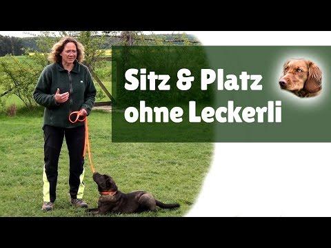Hundetraining ► Hund Sitz beibringen & Hund Platz beibringen ohne Leckerli