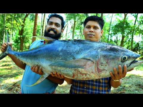 50 kg big giant tuna fish curry cutting cooking skill village food recipe kerala cooking pachakam recipes vegetarian snacks lunch dinner breakfast juice hotels food   kerala cooking pachakam recipes vegetarian snacks lunch dinner breakfast juice hotels food