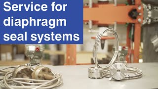 Service for diaphragm seal systems | A global initiative by WIKA
