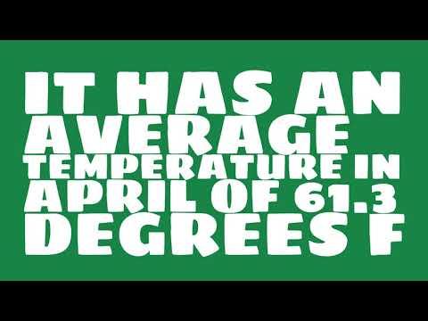 What is the average annual precipitation of Birmingham?