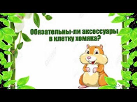 Интернет-магазин sima-land. Ru – клетки для грызунов купить по цене опта от 18 руб. 89 sku в наличии от производителя с доставкой. Москва, санкт петербург, екатеринбург.