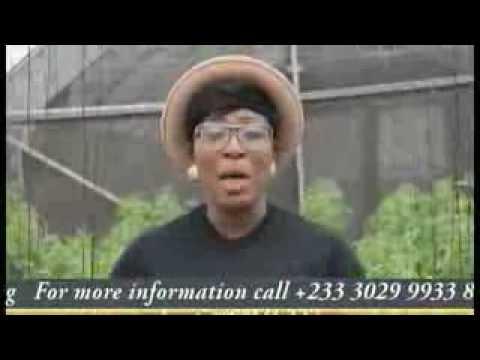 IgniteAfrican Women Agribusiness Incubator Program