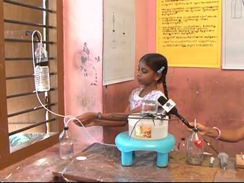 Kerala school Sasthramela 2012-13 (PART 80)