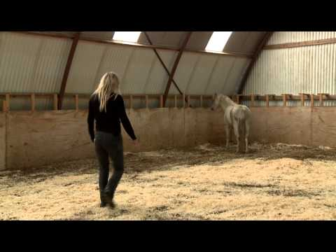 Mia Lykke Nielsen trains small problem pony. When Horses Choose. Mia Lykke Nielsen.