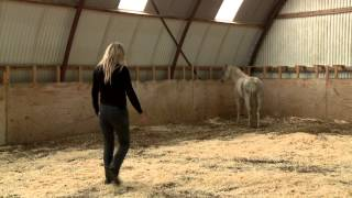 Mia Lykke Nielsen trains small problem pony. When Horses Choose. Mia Lykke Nielsen.
