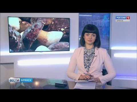 """""""Вести. Брянск"""" (эфир 28.11.2019 в 20:45)"""