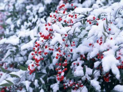Зима. Сказочные,зимние пейзажи