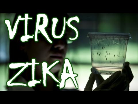 Zika virus - the next pandemic after the Olympic Games in Rio de Janeiro