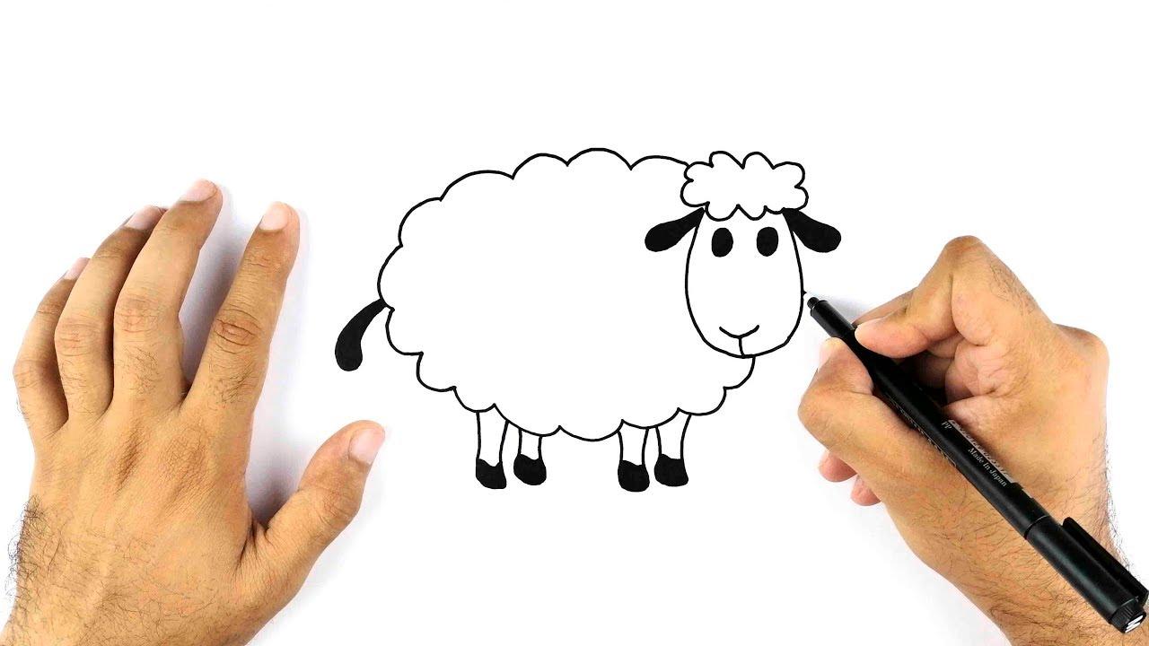 رسم خروف العيد بمناسبة عيد الاضحى بأسهل طريقة Youtube