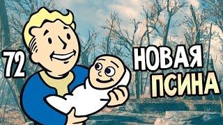 Fallout 4 Прохождение На Русском 72 НОВАЯ ПСИНА