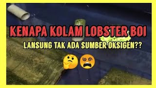 Lobster Air Tawar : Kolam lobster tanpa Oxygen?? Boi bagi penjelasan pada netizen😱