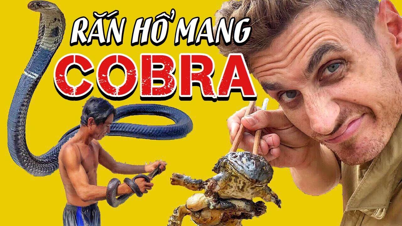 NOBODY EATS this IN VIETNAM!? COBRA? KHÔNG AI ĂN THỨ NÀY!? RẮN HỔ MANG?