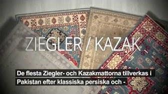 ZIEGLER KAZAK