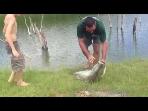 Lake Tinaroo 12 Year Old Boy Caught A 121cm Barra 2013
