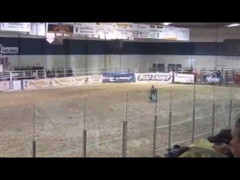 2015 Tisdale Rodeo (CCA) {TooGood}