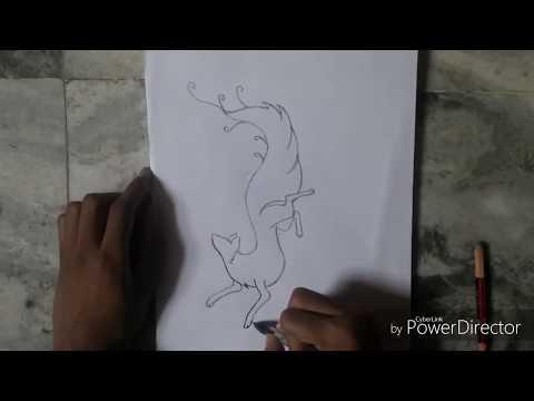//Draw a dancing fox //by visual arts//