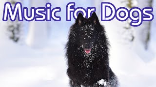 Ultimate Chillout Music for Dogs! NEW Reggae Music for Dogs 2018 🐶