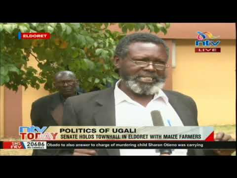 Senate holds townhall in Eldoret with maize farmers