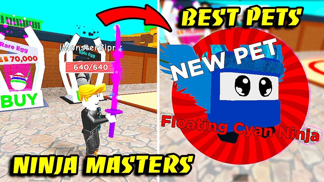 NOOB To MASTER And GOT BEST PET In NINJA MASTERS!! [Roblox]