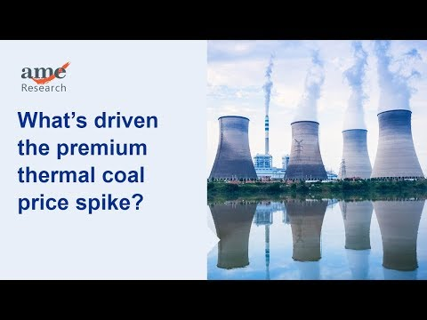 What's driven the premium thermal coal price spike?