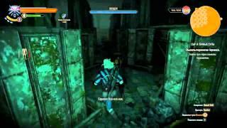 Ведьмак 3: Дикая охота Прохождение [46] Сыр и темные силы