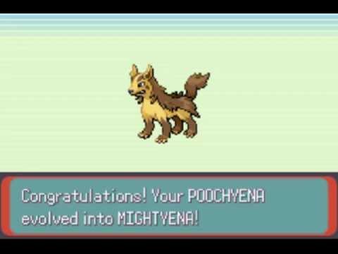 Shiny Poochyena Evolving Shiny Mightyena Youtube