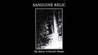 Sanguine Relic (United States) - The Essence of Eternity's Despair (Full Album 2018)