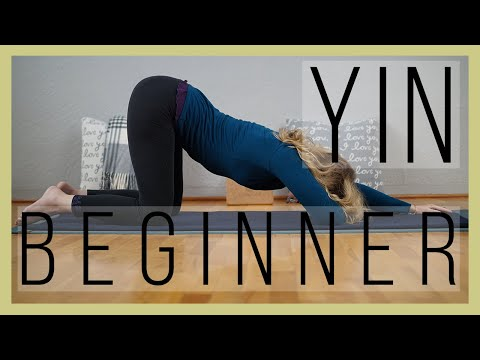 Beginner Yin Yoga 60 min | Meridian Energy | Yoga with Dr. M