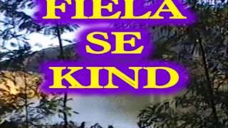 Video Fiela se kind download MP3, 3GP, MP4, WEBM, AVI, FLV September 2017