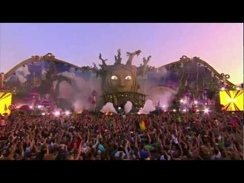 Avicii Levels - Tomorrowland 2011 HD