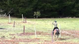 Sherwood Park Mounted Archery