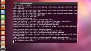 PrivatVPN - How to install Network Manager (Linux Ubuntu)