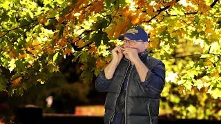 Oblivion (Astor Piazzolla) on harmonica. End of a beautiful autumn.