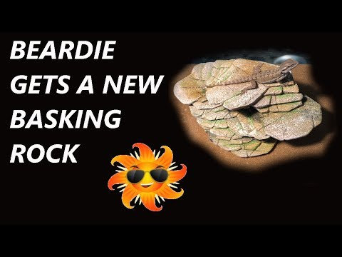 AWESOME NEW BEARDED DRAGON BASKING ROCK/CAVE UNBOXING AND INSTALLATION