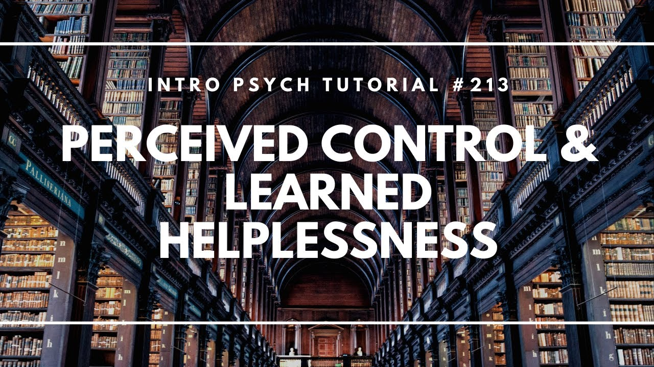 Perceived Control Learned Helplessness Intro Psych Tutorial 213