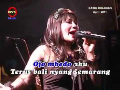 @KELINCI UCUL   AYU MUSTIKa karaoke
