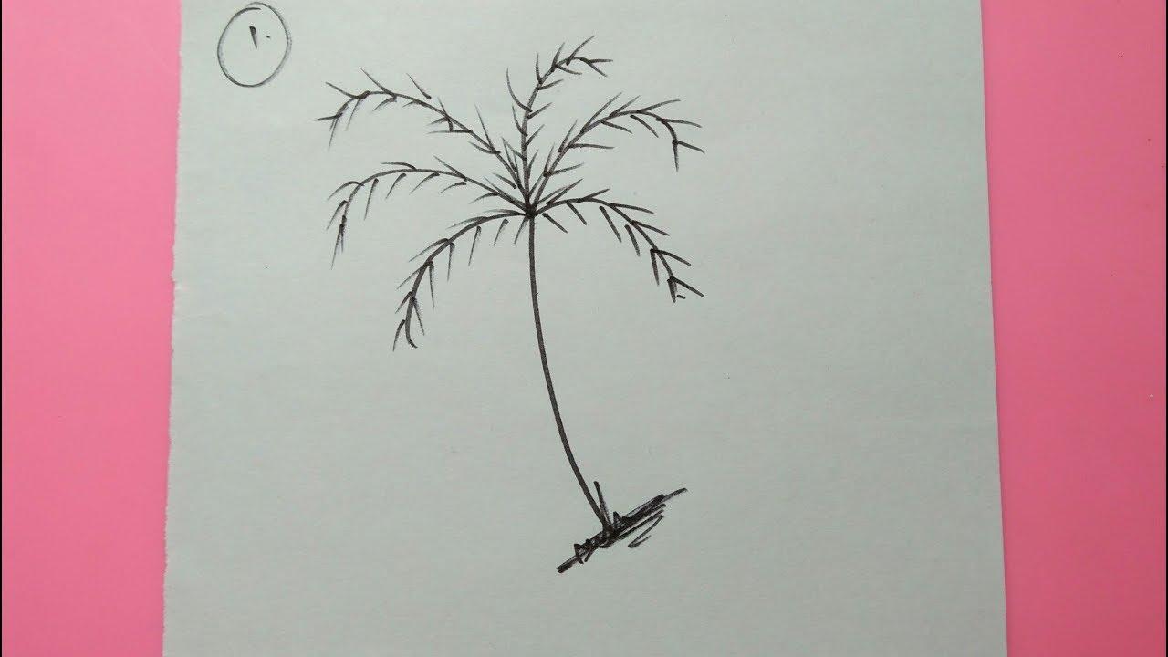 3 Cara Menggambar Pohon Kelapa Dengan Mudah How To Draw Coconut Tree