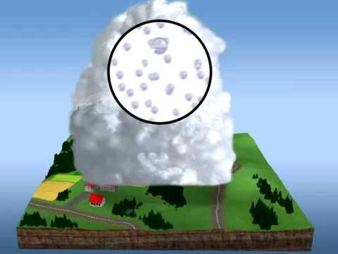 hqdefault - L'interception des précipitations par la végétation