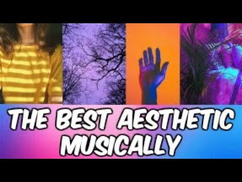 The Best Aesthetic Musically Compilation 2018