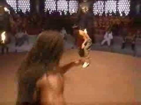 Monkey Kung Fu and Capoeira fight scene