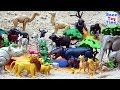 Playmobil Wild Animals Fun Toys in the sandbox - Learn Animal Names For Kids
