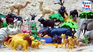 Playmobil Wild Animals Fun Toys in the sandbox - Learn Animal Names For Kids