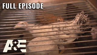 Hoarders: 200 Chickens Living in a Trailer - Full Episode (S3, E19) | A&E