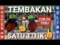 Konin Gacor Full Tembakan Satu Titik Tembakan Ciblek Tebu Masteran  Mp3 - Mp4 Download