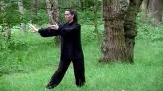 Joanne Fermor Performing Yang Style Tai Chi Chuan Short Form