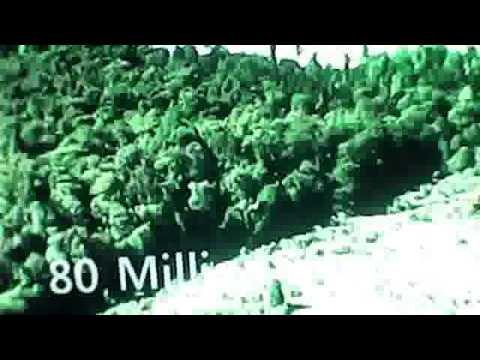 Мультфильм Король сафари (2013) смотреть онлайн бесплатно