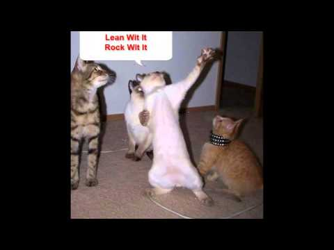 Pics For > Funny Cat With Gun Animation
